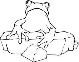 frog rock coloring color book