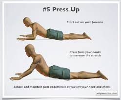 Lower Back Pain Bench Press 22 Best Exercises To Avoid With Lower Back Pain Images On