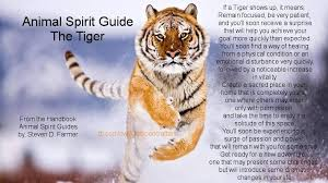 tiger symbolism meaning power tigers and tiger tiger