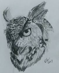 the 25 best draw an owl ideas on pinterest how to draw owl owl