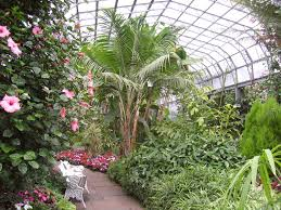 winter gardens duthie park aberdeen mapio net