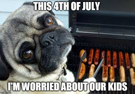 4 Of July Memes - lynn school watch judy how did your meeting with the lt gov go