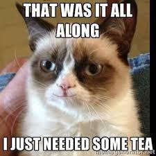 Tea Meme - cat tea meme best 5 supplements