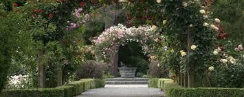 New Zealand Botanical Gardens Auckland Botanic Gardens Auckland Celebrant