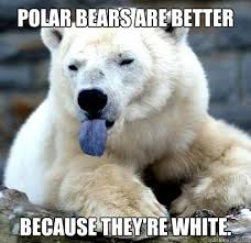 Polar Bear Meme - confession polar bear memes quickmeme