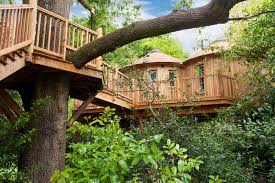 Real Treehouse Resources Articles The Top 5 Treehouses Glamping Com