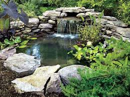 Garden Pond Ideas 21 Diy Water Pond Ideas Diy Water Gardens For Backyards