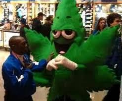 Marijuana Halloween Costume Giant Marajuana Leaf Thrown Blue Jays U0027