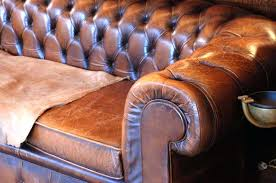 Repair Scratches On Leather Sofa Cat Scratching Leather Or Can You Repair Cat