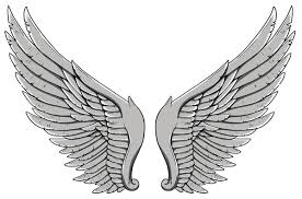 tribal wings high quality photos and flash designs of