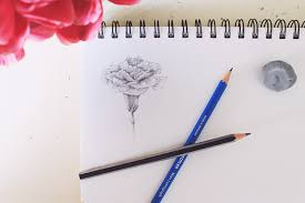blooming garden learn how to draw flowers in just 4 steps