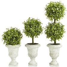 faux mini boxwood topiary set pier 1 imports