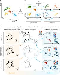 visual analysis of mass cytometry data by hierarchical stochastic