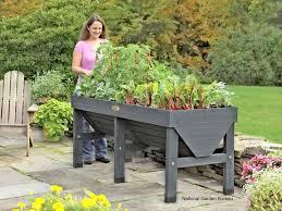 Patio Vegetable Garden Ideas Potted Vegetable Garden Gardening Ideas