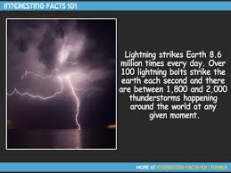 interesting facts and amazing facts