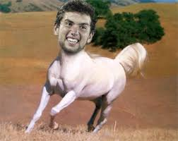 Andrew Luck Memes - seriously tom brady colts football indianapolis colts fan forum