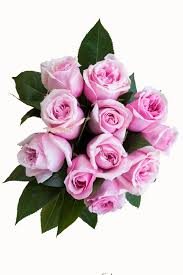 next day delivery flowers light pink roses next day delivery flower explosion