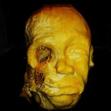 the 26 dopest and most deranged halloween pumpkins ever carved