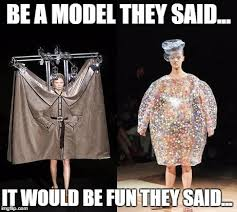 Model Meme - they said models imgflip