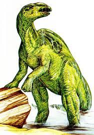 anatotitan pictures u0026 facts the dinosaur database