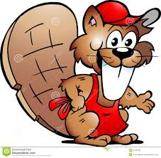 drawn beaver clipart pencil and in color drawn beaver clipart
