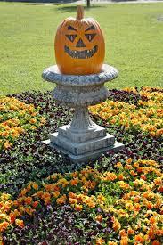 use pumpkins fall flowers to celebrate the new season