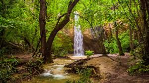 scenery images Fantastic scenery beautiful small waterfall in bright green png