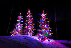 nice ideas colored christmas tree lights incandescent vs led