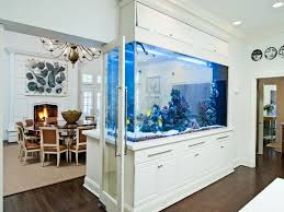 home office with track lighting and saltwater aquarium fresh