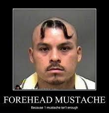 Mustache Ride Meme - tom selleck meme meme generator tom selleck creator of the mustache