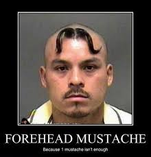Mustache Ride Meme - tom selleck meme meme generator tom selleck creator of the