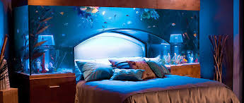 large aquarium decorations design ideas decors