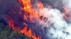 Wildfires In South West brush fire in southwest miami dade county florida march 20 2017