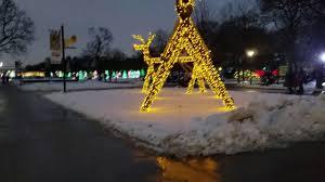 brookfield zoo winter lights brookfield zoo lights 2016 3 youtube
