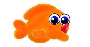 orange fish drawings sketchport