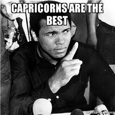 Capricorn Meme - 20 best memes about being a capricorn love brainy quote