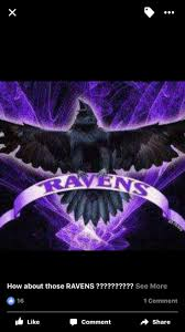Baltimore Ravens Home Decor 31 Best Football Baby Images On Pinterest Football Baby