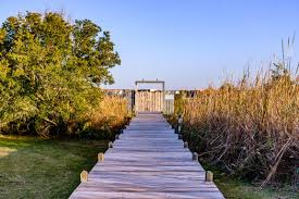 173 big hammock point road sneads ferry pelican point 100090486