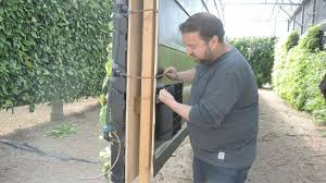 Watering Vertical Gardens - tomorrow u0027s farmers will need ladders as green goes vertical the
