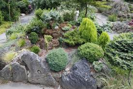 red and black pumice rock garden displaying miniature and dwarf