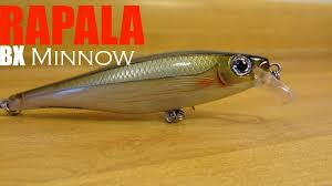 rapala lures rapala bx minnow the king of lure eye candy youtube