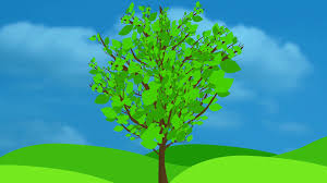 growing tree animation wavy leaves an animated illustration
