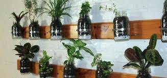 indoor herb garden wall mason jar indoor herb garden wall art hang indoor herb garden
