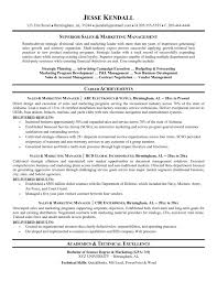 it manager resume examples executive resume template doc saneme
