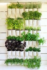 Indoor Herbal Garden Save Time And Money With A Vertical Pallet Herb Garden Pallet