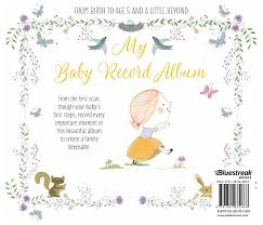 baby album my baby record album book by bluestreak books official