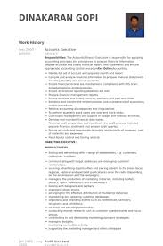 latest resume format for account assistant responsibilities accounts executive resume sles visualcv resume sles database