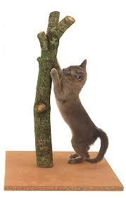 Cat Scratch Lounge 67 Best Cat Scratch Post Tree Images On Pinterest Cat Furniture