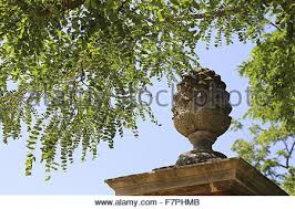 pineapple garden ornament stock photo royalty free image 3244272