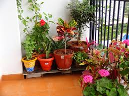 beautiful balcony garden for modern house and apartment potted